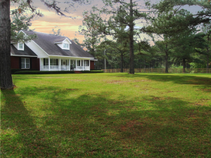 Horse Farm In NW Florida for sale